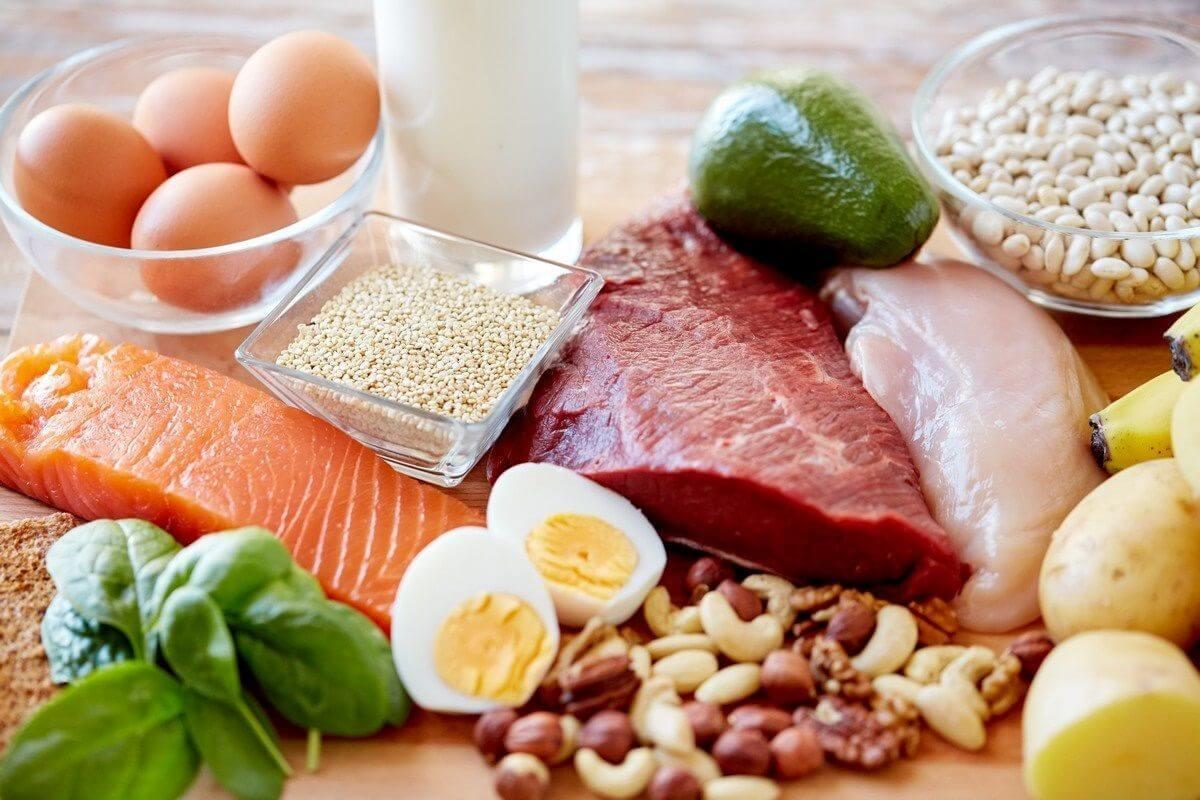 پروتئین دوران باداری