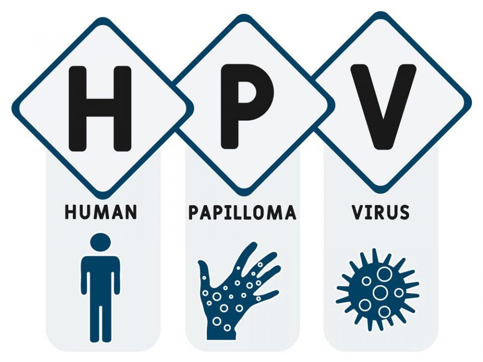 زگیل تناسلی HPV